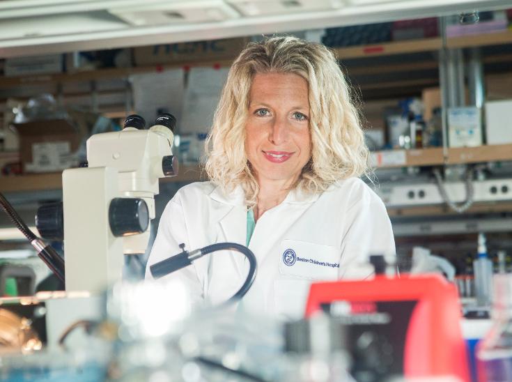 Dr. Beth Stevens